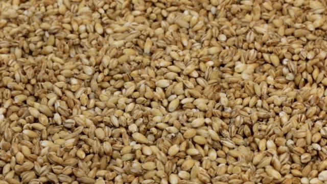 回転、背景全体のパール大麦穀物の山から作られました。 - 大麦点の映像素材/bロール