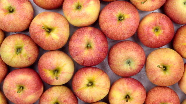 Rotation close-up, background of red apples. Rotation close-up, background of red apples. Food background snack stock videos & royalty-free footage