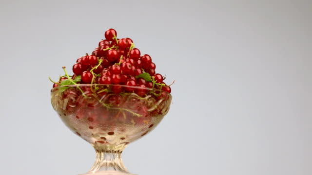 rotation of a glass vase with a heap of red currants. - ribes rosso video stock e b–roll