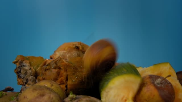 A rotten apple slowly falls into a pile of compost. video
