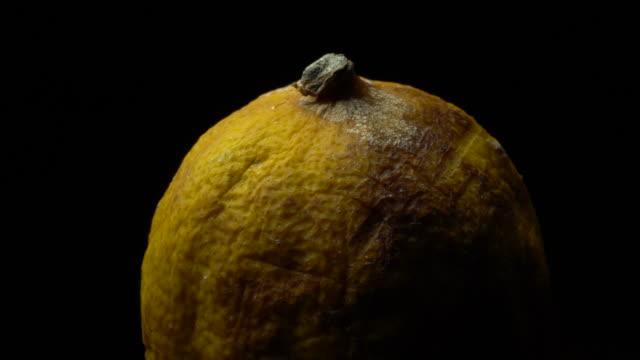 faule zitrone in der fruchtfolge - verfault stock-videos und b-roll-filmmaterial