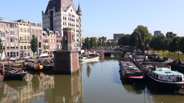 rotterdam harbor with ships, real time - rotterdam video stock e b–roll