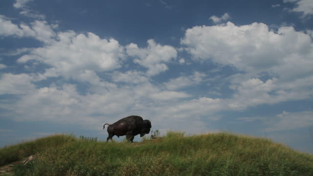 Route 66 Timelapse of buffalo statue with clouds video