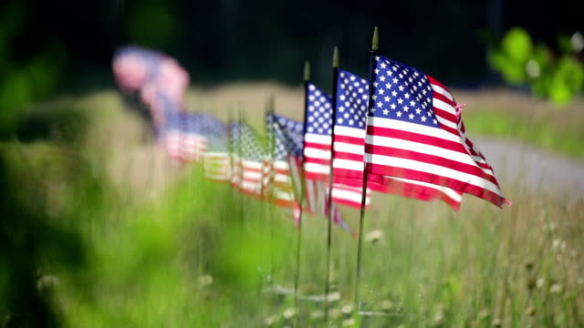Row of American Flags On Fence Waving in the Wind Long Row of American Flags On Fence Waving in the Wind. veteran stock videos & royalty-free footage