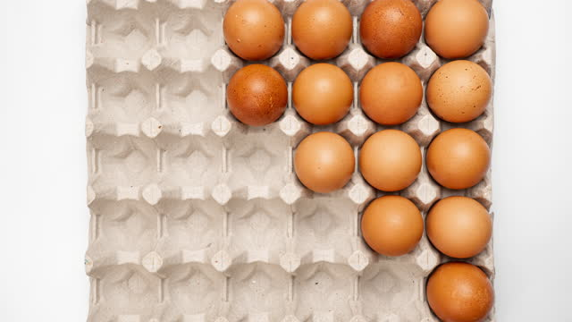 Row of brown chicken eggs moving in and out of egg carton, Stop Motion.