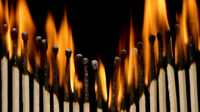 SLOW MOTION: Row of burning matchsticks strongly video