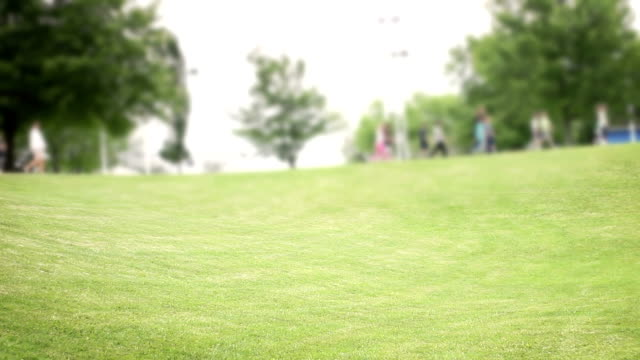 Row of kindergarten students walking by field out of focus in background - vídeo
