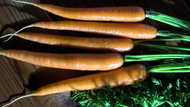 A row of young carrots on a wood background A row of young carrots on a black wood background carrot stock videos & royalty-free footage
