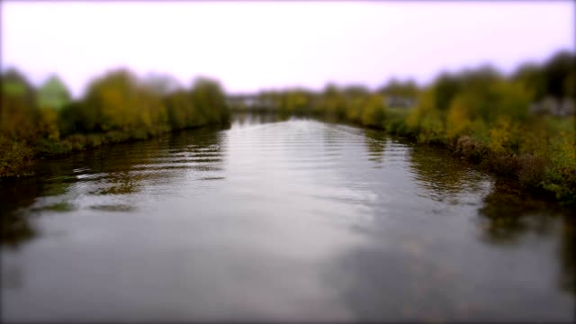 Rowers and Boats on the River. Tilt Shift Timelapse video