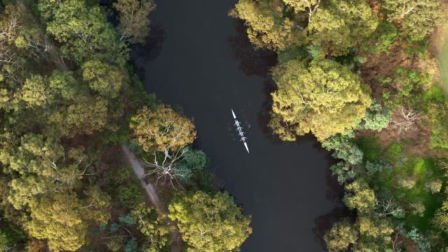 ボート ボート、ヤラ川、メルボルン、ビクトリア、オーストラリア - オーストラリア メルボルン点の映像素材/bロール