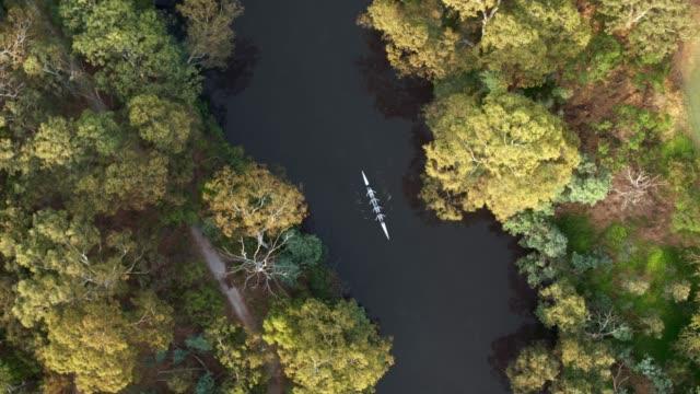 rowing boat, yarra river, melbourne, victoria, australia - melbourne stock videos & royalty-free footage