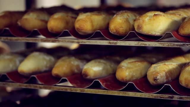 rows of fresh bread - pane forno video stock e b–roll
