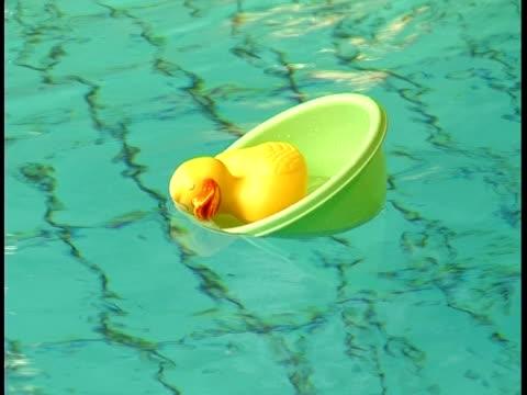vídeos de stock e filmes b-roll de pato de borracha em uma piscina pública - brinquedos na piscina