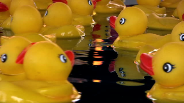 Royalty Free Rubber Duck HD Video, 4K Stock Footage & B-Roll - iStock