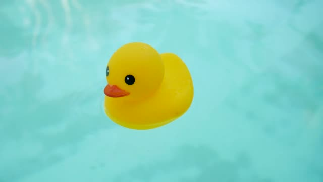 vídeos de stock e filmes b-roll de flutuante ducky de borracha em uma piscina - brinquedos na piscina