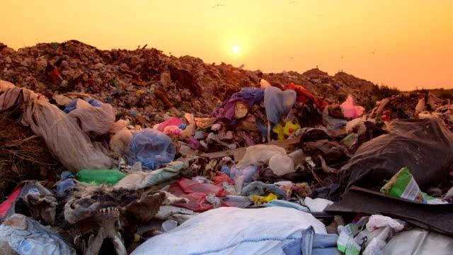 Rubbish Dump At Sunset video