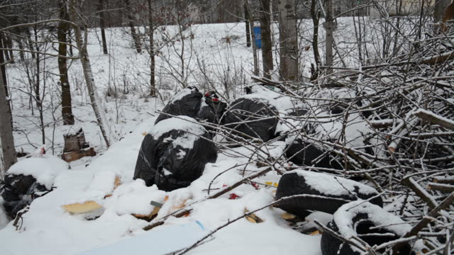 Rubbish in the forest winter video