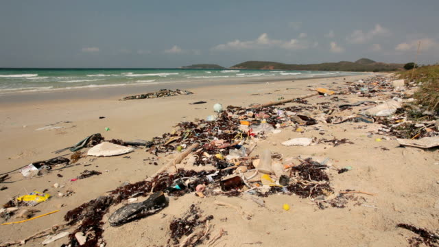 Rubbish washed up on the shore on the beach video