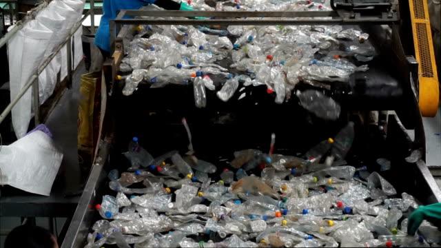 rubbishes flugit på transportband för återvinning process - pet bottles bildbanksvideor och videomaterial från bakom kulisserna
