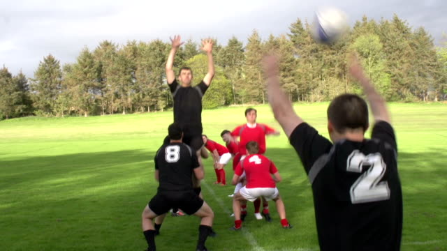 Rugby Match Lineout with ball thrown in by Hooker video