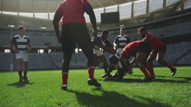 Rugby players playing rugby match in stadium 4k Front view of diverse rugby players playing rugby match in stadium. They are tackling each other 4k rugby stock videos & royalty-free footage