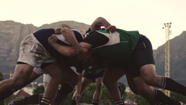 Rugby players pushing in a scrum Rugby players doing a scrum at the field. Rugby players fight for the ball on professional rugby stadium. rugby stock videos & royalty-free footage