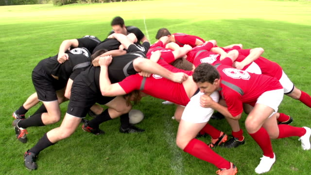 Rugby Scrum in a match - Live sports action Stock HD video clip footage of a Scrum in a rugby match. The scrum half rolls the rugby ball in and the forwards of both teams push hard to win the ball back. Filmed outdoors on a grass pitch. Great sports action clip, perfect for the Rugby world cup. rugby stock videos & royalty-free footage