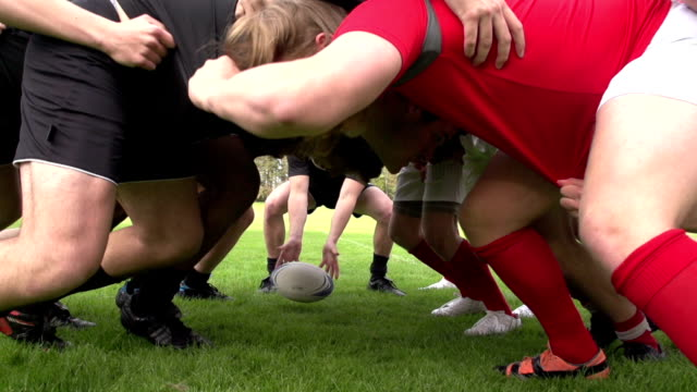 Rugby Scrum in a match (sport) - Slow motion Stock HD video clip footage of a Scrum in a rugby match. The scrum half rolls the rugby ball in and the forwards of both teams push hard to win the ball back. Filmed outdoors on a grass pitch. Filmed at 200 fps super slow motion. Great sports action clip, perfect for the Rugby world cup. rugby stock videos & royalty-free footage