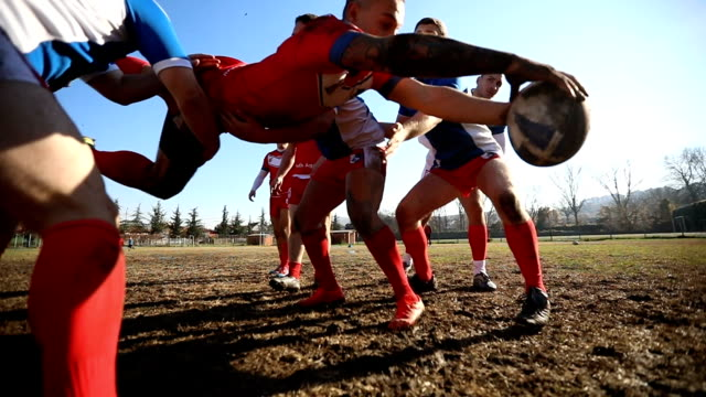 Rugby team playing on the field Group of men playing rugby outdoors in the mud rugby stock videos & royalty-free footage