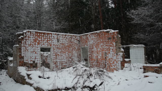 Ruins of a destroyed building in the forest video