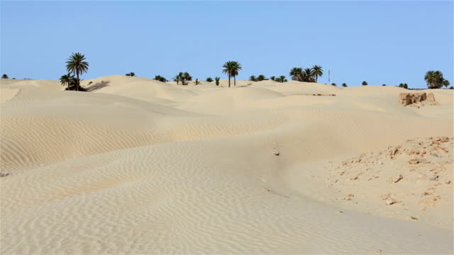 Ruins of village Zaafrane / Kebili Governorate / Tunisia