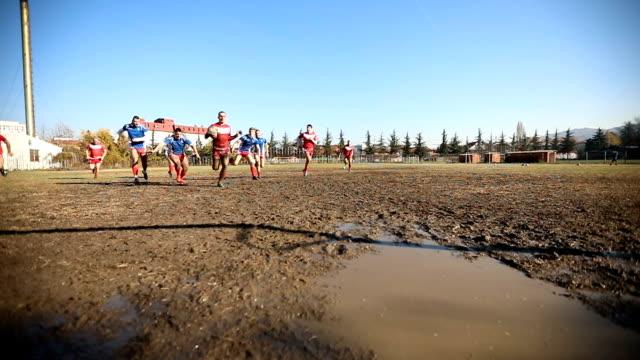 vídeos y material grabado en eventos de stock de ejecutar para el ganado - rugby
