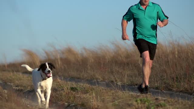 stockvideo's en b-roll-footage met runner and dog - alleen één mid volwassen man