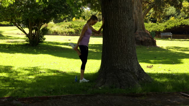Runner stretching her legs leaning against tree Runner stretching her legs leaning against tree on a sunny day leaning stock videos & royalty-free footage