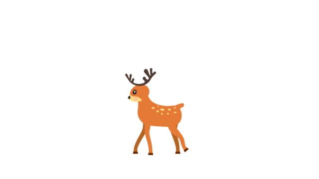 stockvideo's en b-roll-footage met rennend hert lopen animatie met optionele luma matte. alfa luma matte opgenomen. 4k video - rendier