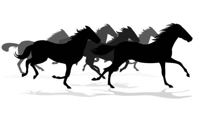 実行中の馬のシルエット - ロデオ点の映像素材/bロール
