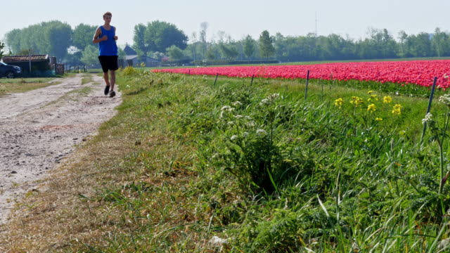 stockvideo's en b-roll-footage met hardlopen in nederland - floral line