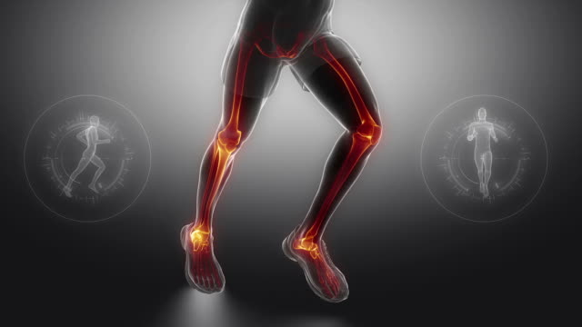Running man leg bones and joints scan video