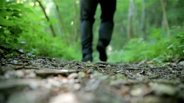 бег через лес - сбежавший из дома стоковые видео и кадры b-roll