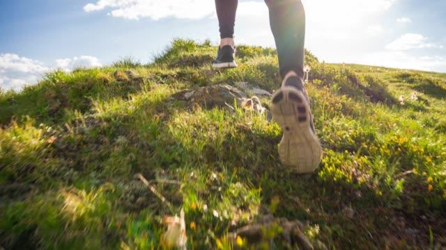 springa uppför på en grön äng högt i bergen - jogging hill bildbanksvideor och videomaterial från bakom kulisserna
