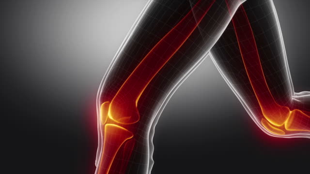 Running woman focused on knee 3D runner bones anatomy concept pain stock videos & royalty-free footage