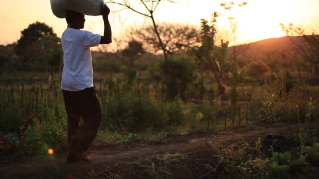 Rural African farmer carries bag of food on his head video