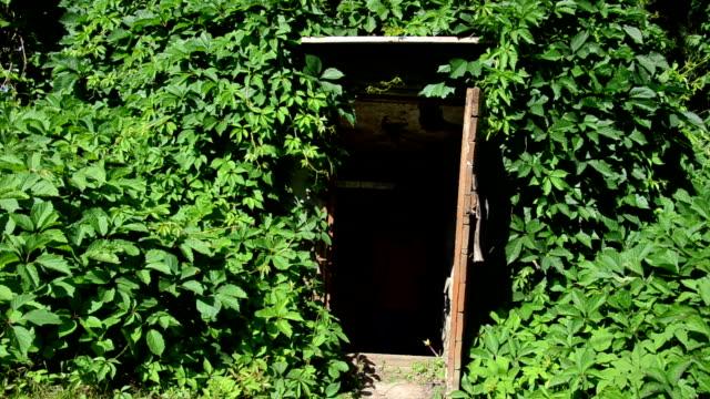 rural basement woman - basement stock videos & royalty-free footage