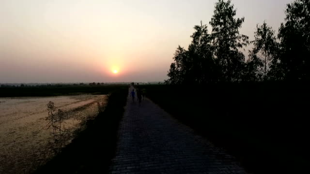 rural children running on country road - haryana video stock e b–roll