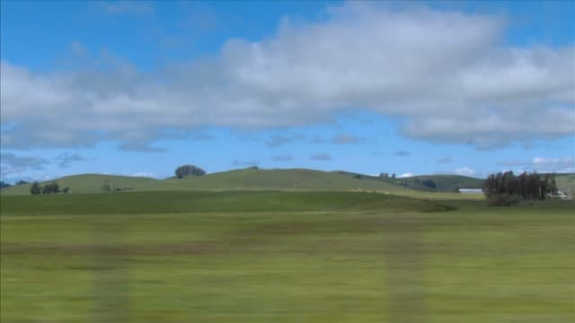 Rural Drive View of rural landscape from a moving vehicle. blade of grass stock videos & royalty-free footage