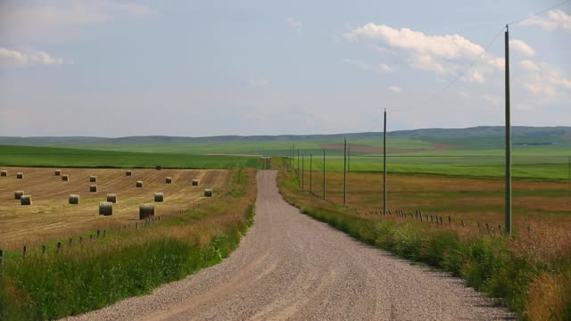 rural gravel country road alberta - erba medica video stock e b–roll