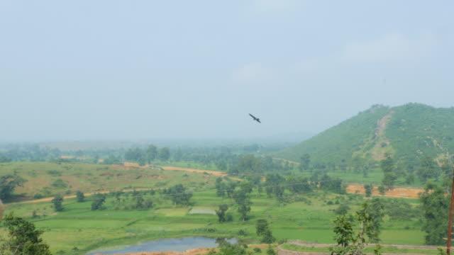 ackerland in indien natürliche szenische fotografie - himachal pradesh stock-videos und b-roll-filmmaterial