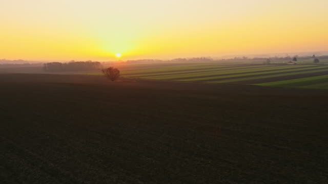 AERIAL Rural landscape in the sunset video