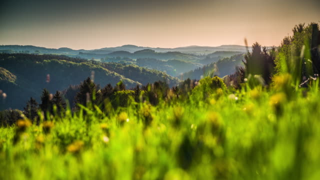 CRANE: Rural Landscape