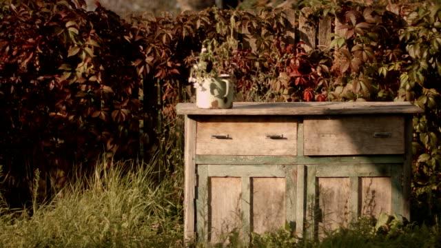 Rural Scene video